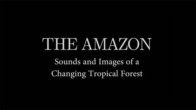 INCT Amazonia Carlos Nobre